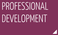 Professional development category